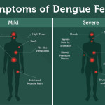 You should Know this to protect your child from Dengue
